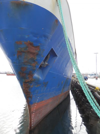 COMPLETE project at IMO GloFouling Partnerships Project Kick Off